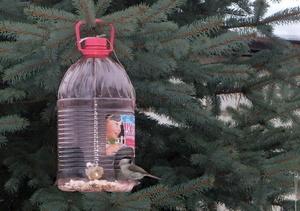 Кормушка из пластиковой бутылки на 5 литров
